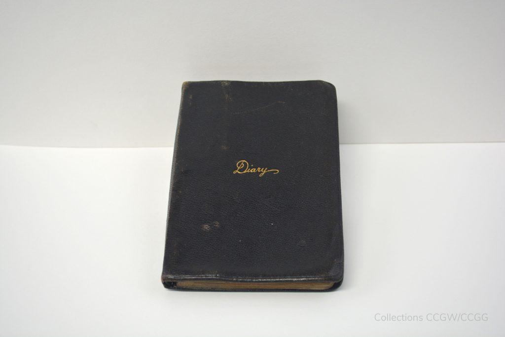 Lieutenant Rayner's Diary