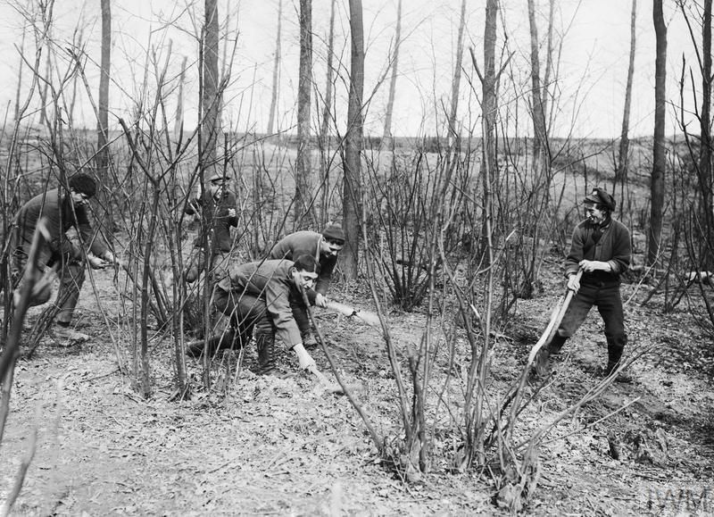 men sifting through the dirt